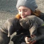 PuppiesBijOnsThuis_P1050177